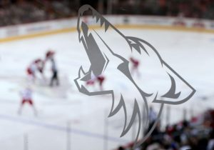 New Name Arizona Coyotes 2014