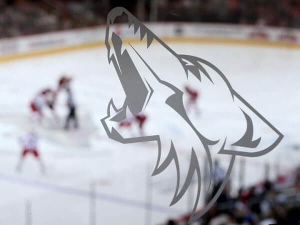 New Name Arizona Coyotes 2014