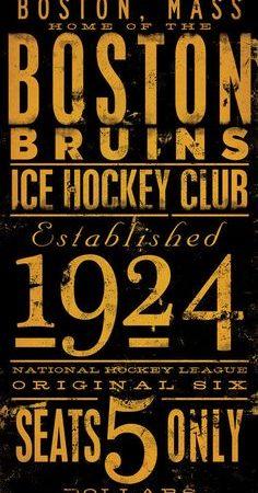 boston bruins 1924