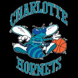 Charlotte Hornets Primary Logo 1989 - 2002