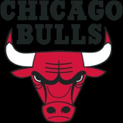 Chicago Bulls Primary Logo 1967 - Present