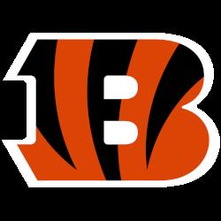 Cincinnati Bengals Primary Logo 2021 - Present